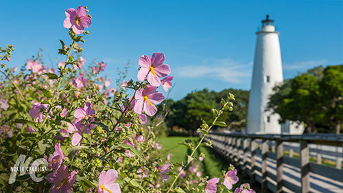 The Ocracoke Lighthouse with Flowers in Foreground